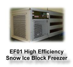 GE-EF01